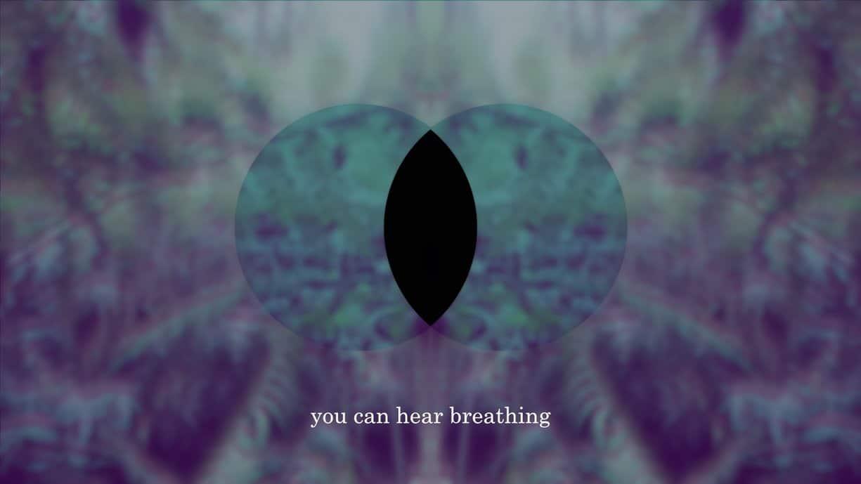 Decolonist Meditation Still: artwork by Katie West.